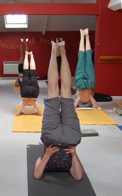 hatha yoga at derekthedog